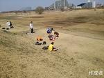 矢野口の芝は全て枯れております。春が待ち遠しい。